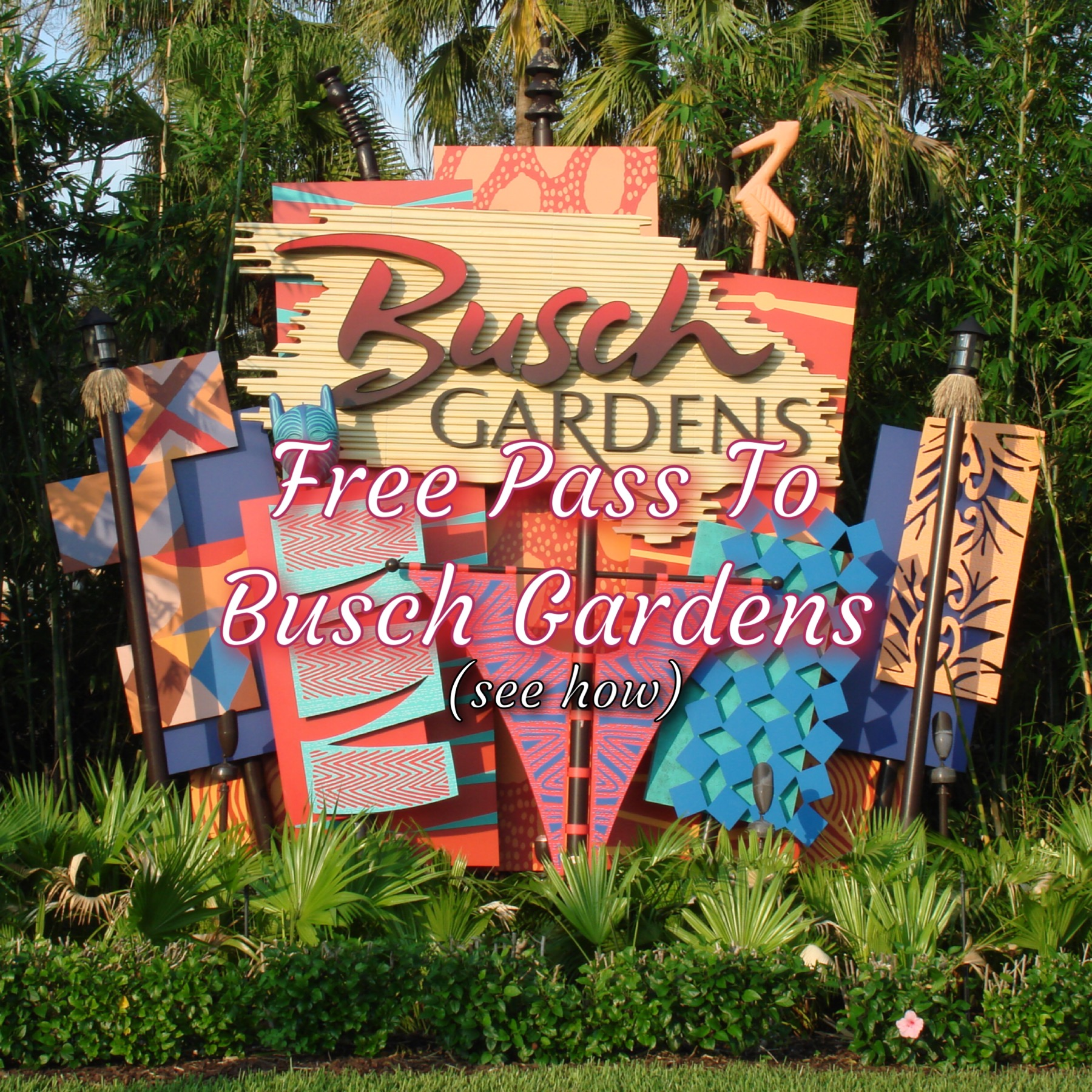 Free Park Pass To Busch Gardens Water Country Usa